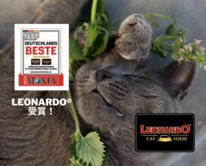 Leonardo®が受賞しました!
