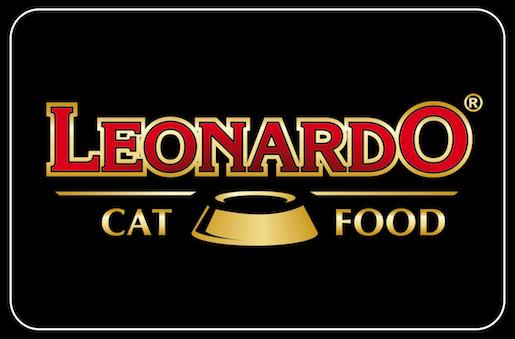 Leonardo Japan
